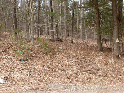 Residential Lots & Land For Sale: Spring Woods