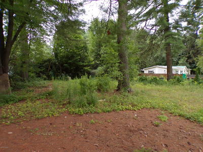 Queensbury Residential Lots & Land Contingent Contract: 3 Pinello Road