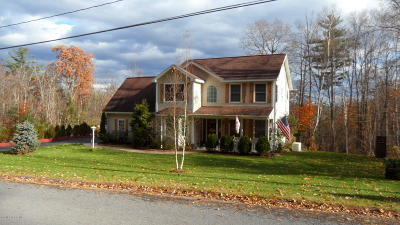 Lake George Single Family Home For Sale: 272 Middle Road Road