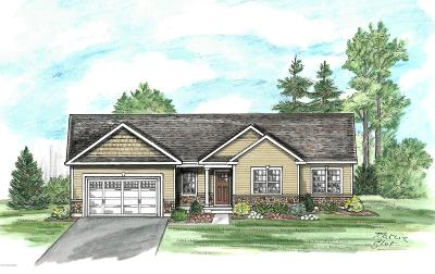 Moreau Single Family Home For Sale: 108 Butler Road