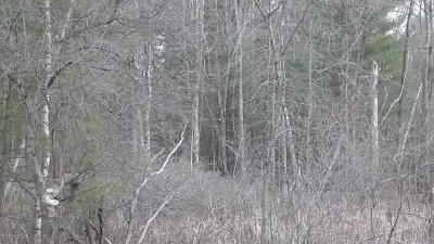 Saratoga County Residential Lots & Land For Sale: 00 Edie Road