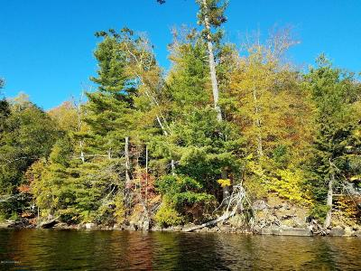 Brant Lake Residential Lots & Land For Sale: 18 North Sand Beach Road