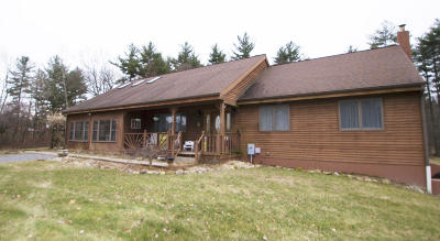 Saratoga County Single Family Home For Sale: 269 Nys Route 423