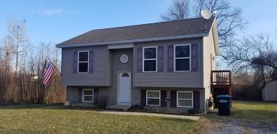 Glens Falls Single Family Home For Sale: 81 Peck Avenue