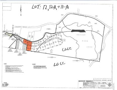 Residential Lots & Land For Sale: Lot 12 12a Shadyside Way