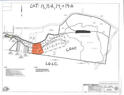 Residential Lots & Land For Sale: Lot 13 13a Shadyside Way