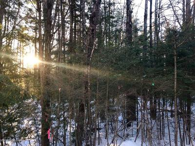 Essex County Residential Lots & Land For Sale: Tbd Pine Lane