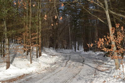 Bolton Residential Lots & Land For Sale: County Rte 11 #139.00-1-2