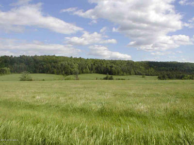 Washington County Residential Lots & Land For Sale: Tbd County Route 1