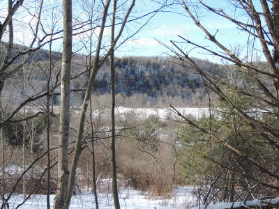 Washington County Residential Lots & Land For Sale: St Rte 22