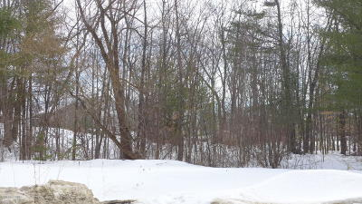 Saratoga County Residential Lots & Land For Sale: 91 Lemont Avenue