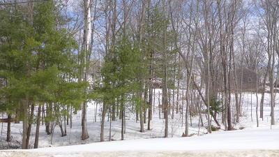Saratoga County Residential Lots & Land For Sale: 93 Lemont Avenue