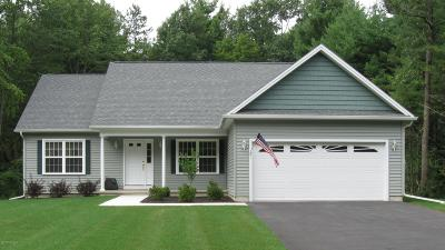 Saratoga County Single Family Home For Sale: 178 Butler Rd
