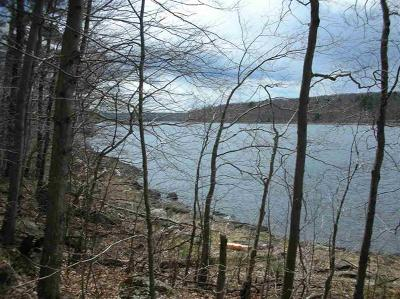 Forestburgh Residential Lots & Land For Sale: Lakeside Forest Dev