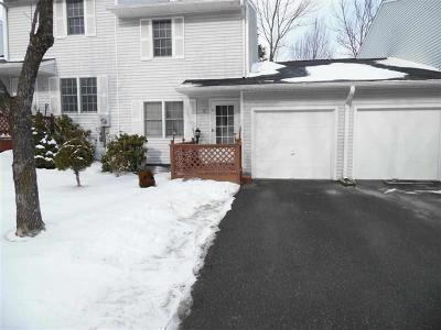 Sullivan County Single Family Home For Sale: 17 Kenny Lane