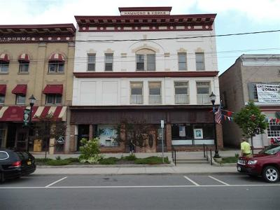 Monticello Commercial For Sale: 424 Broadway