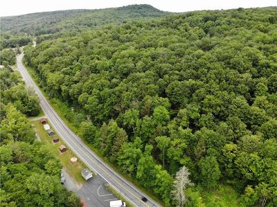 Residential Lots & Land For Sale: (Lot 1) State Route 55