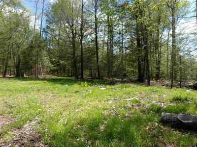 Fallsburg Residential Lots & Land For Sale: Church Road