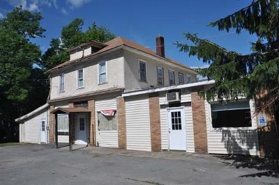 Sullivan County Commercial For Sale: 206 Parksville Road