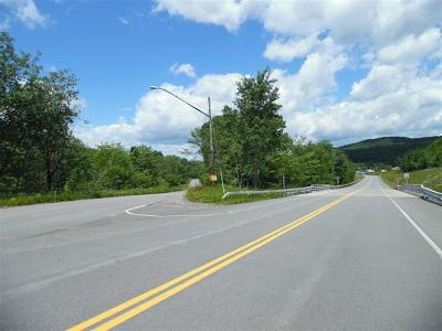 Sullivan County Commercial For Sale: Parksville Road