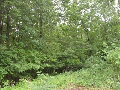 Residential Lots & Land Sold: 20.6 State Route 97
