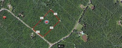 Residential Lots & Land Sold: Lot 28 Maple Lane