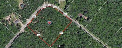 Residential Lots & Land For Sale: Lot #1 Maple Lane