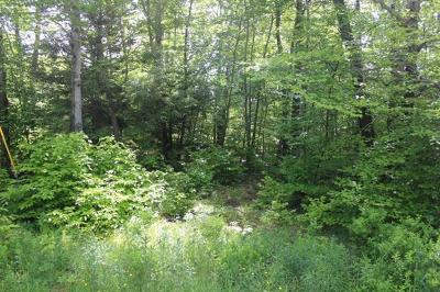 Roscoe NY Residential Lots & Land For Sale: $40,900