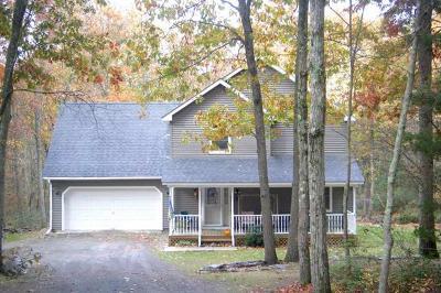 Barryville Single Family Home For Sale: 101 Split Rock Road