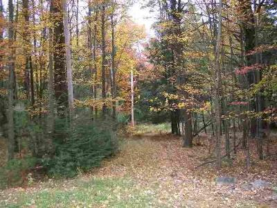 Forestburgh Residential Lots & Land For Sale: 00 Rt. 42