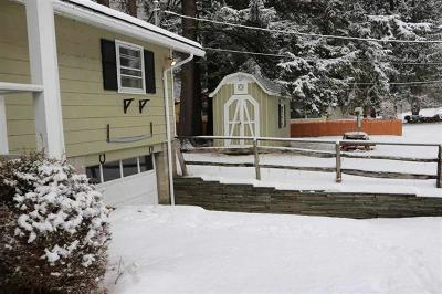Delaware County Single Family Home For Sale: 316 Island Road Left