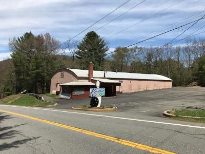 Callicoon, Callicoon Center Commercial For Sale: 9202 State Route 97