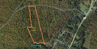 Forestburgh Residential Lots & Land For Sale: 1.18 French Clearing