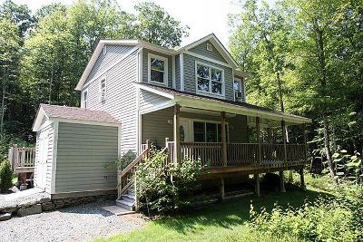 Narrowsburg Single Family Home For Sale: 55 Parker Road