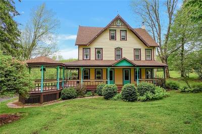 Callicoon, Callicoon Center Single Family Home For Sale: 216 Villaroma Road