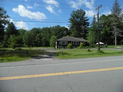 Monticello Commercial For Sale: 575 State Route 17b