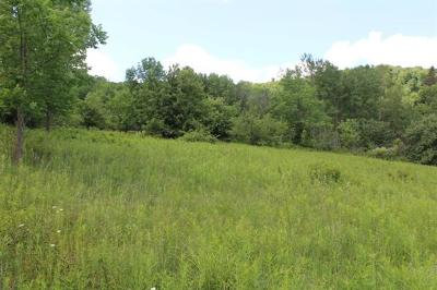 Parksville NY Residential Lots & Land For Sale: $20,000