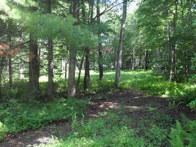 Glen Spey Residential Lots & Land For Sale: 21 11 1 Ivan Franco Road