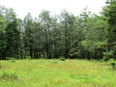 Lake Huntington Residential Lots & Land For Sale: 0000 Smales Road