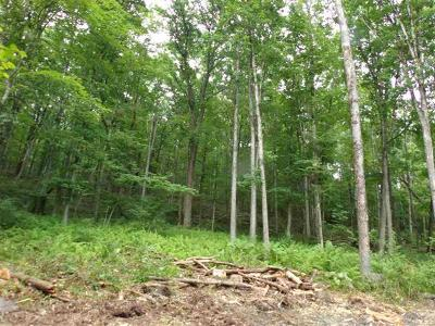 Cochecton Residential Lots & Land For Sale: 121 Cushetunk Drive