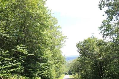 Sullivan County Residential Lots & Land For Sale: 4.1/2 Brown Settlement Road