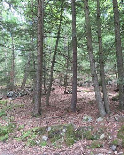 Residential Lots & Land For Sale: 36 Upper Lumber Road