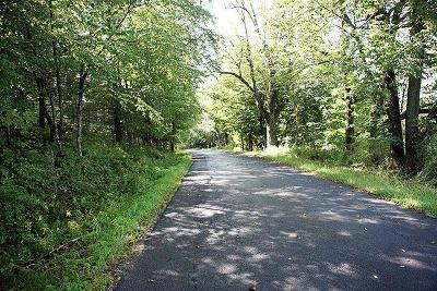 Residential Lots & Land For Sale: Peters Road