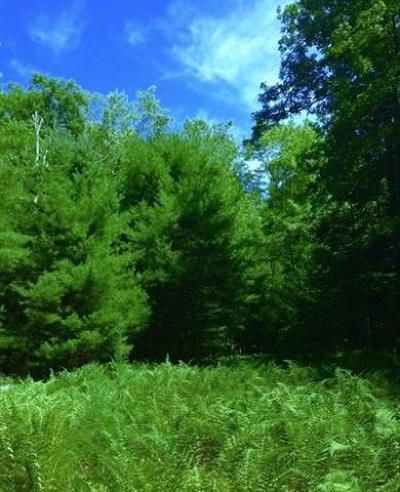 Residential Lots & Land For Sale: (65) Upper Lumber Road