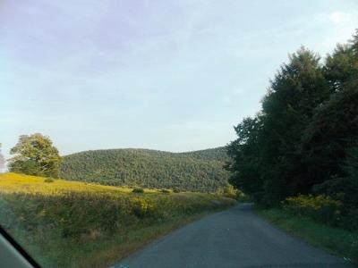 Walton-Dc NY Residential Lots & Land For Sale: $55,000