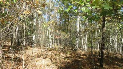 Residential Lots & Land Sold: Lot #16 Evergreen Lane