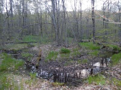 Sullivan County Residential Lots & Land For Sale: Gulf Road