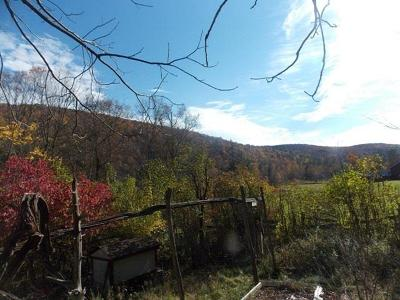 Grahamsville NY Residential Lots & Land For Sale: $25,000