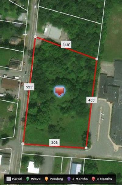 Residential Lots & Land For Sale: 3.0 Nys Hwy 55