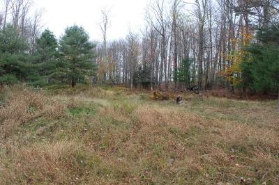 Neversink NY Residential Lots & Land For Sale: $129,900